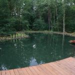 Zwemvijver-4